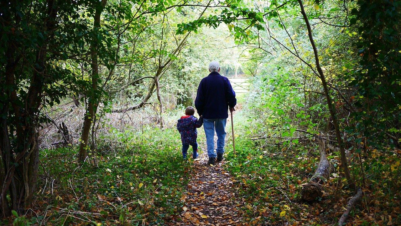 Grand-père se promenant en forêt avec son petit enfant