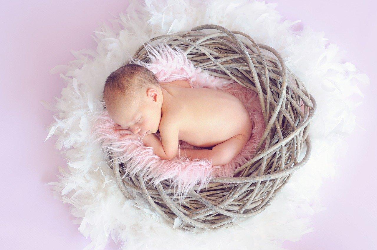 Photographie d'un bébé dans un nid