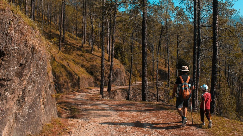 Enfant marchant en montagne en foret au côté de son père